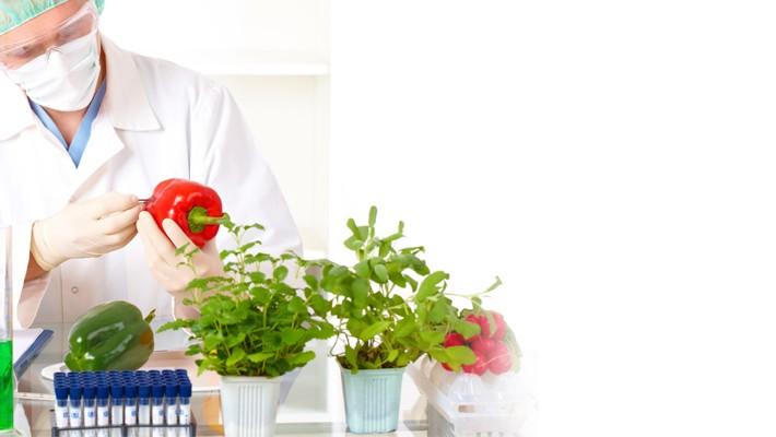 TESTY ImuPro- wykrywanie alergii pokarmowej utajonej-IgG zależnej